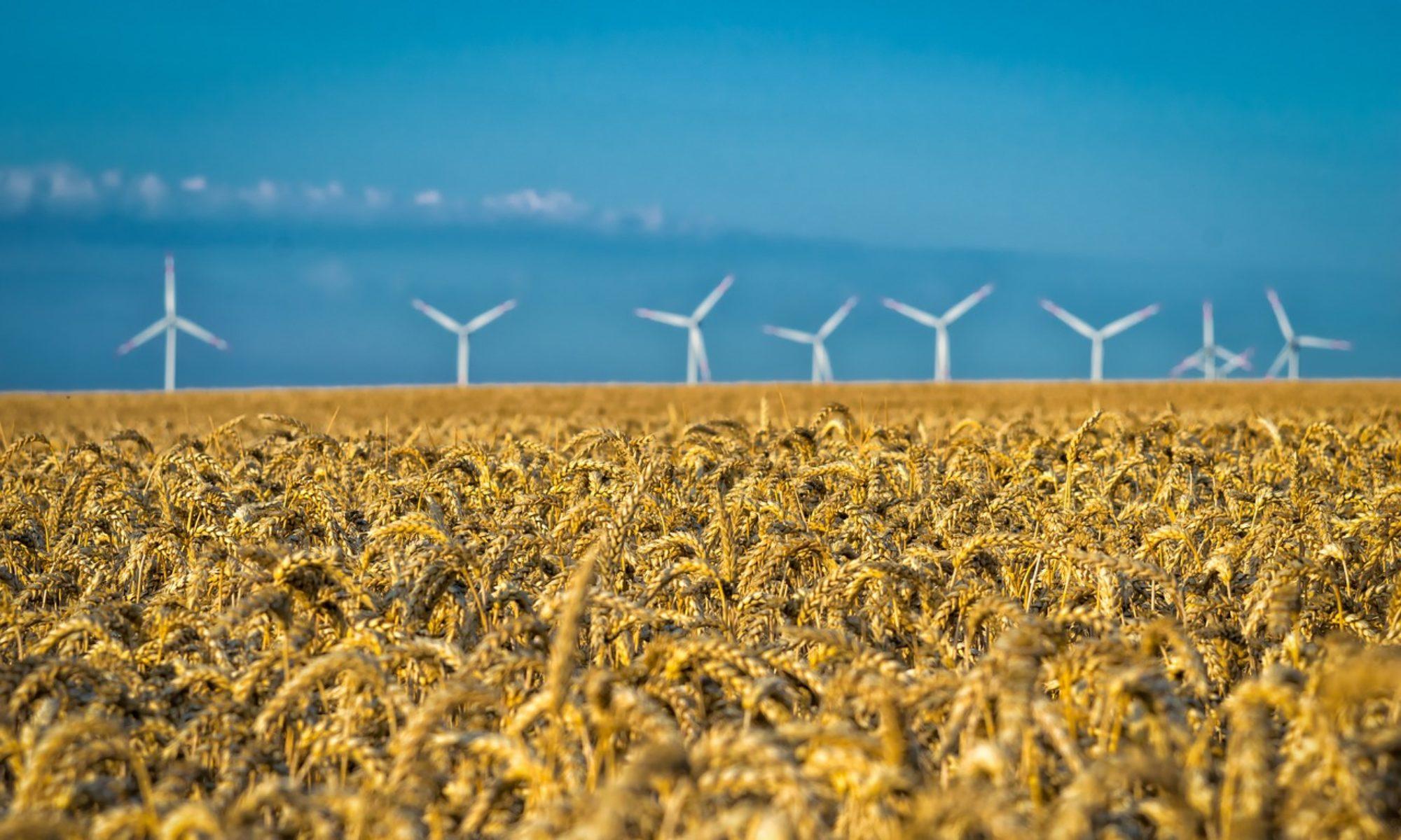 Agri Développement